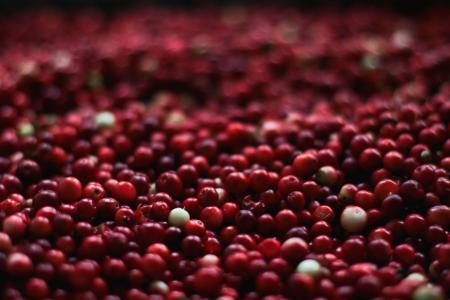 味精的主要成分是什么(味精是化学合成品?对身体有害?)