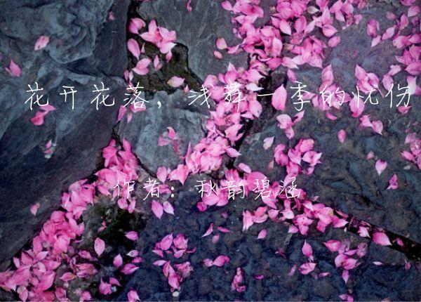 彼岸花开花不见叶叶不见花_水仙开花时晒太阳吗_花开花落时作文