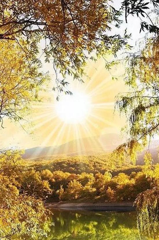 让温暖走进心灵_《温暖心灵的阳光》_温暖心灵的阳光 李人庆